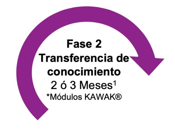 Fase 2 implementación KAWAK®