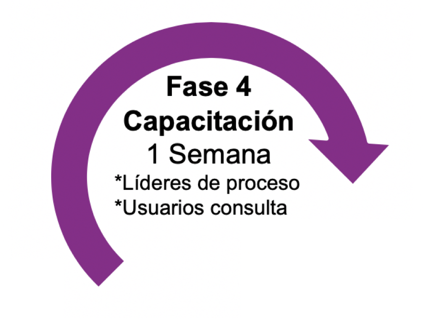 Fase 4 implementación software KAWAK®